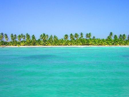 Punta Cana coconut coast